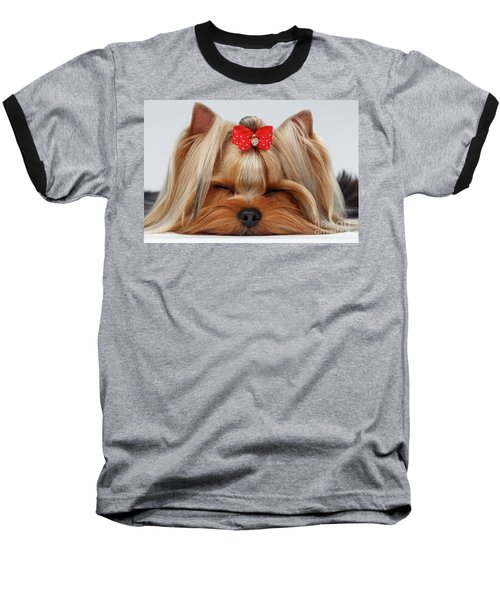 Closeup Yorkshire Terrier Dog With Closed Eyes Lying On White  Baseball T-Shirt