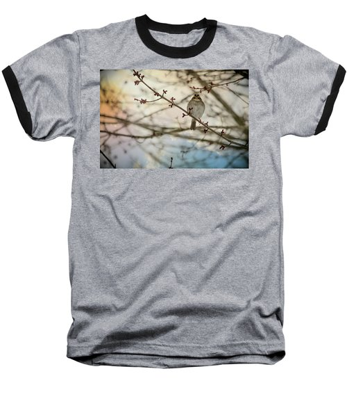 Baseball T-Shirt featuring the photograph Cloudy Finch by Trish Tritz