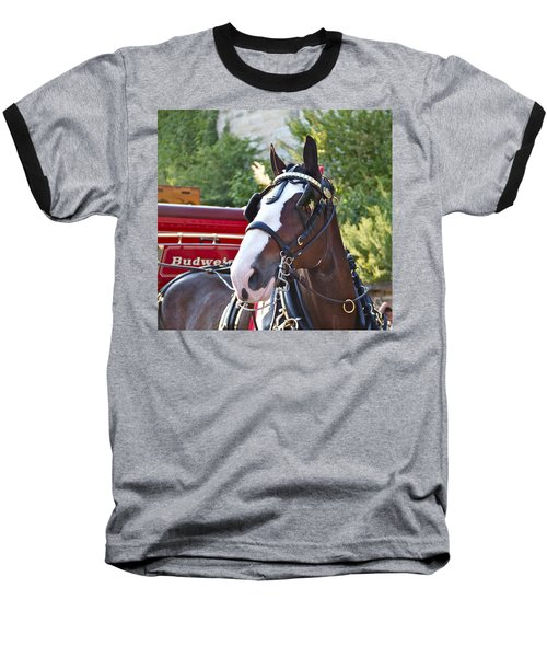 Clydesdale At Esp Baseball T-Shirt