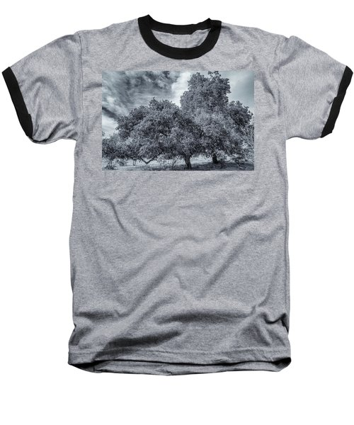 Coast Live Oak Monochrome Baseball T-Shirt