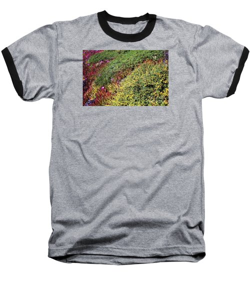 Coastal Flowers And Ice Plant Baseball T-Shirt by Ted Pollard