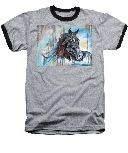 Coat Of Many Colors Baseball T-Shirt