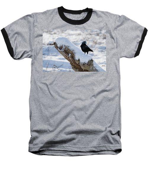 Cold Winter Baseball T-Shirt