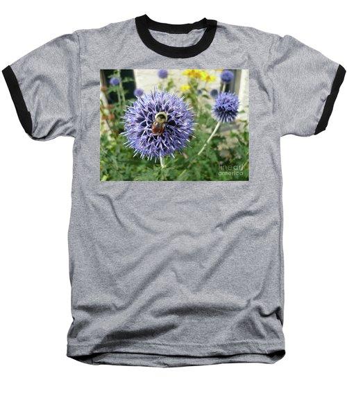 Collector Baseball T-Shirt