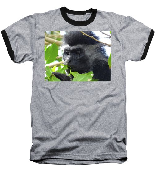 Colobus Monkey Eating Leaves In A Tree Close Up Baseball T-Shirt