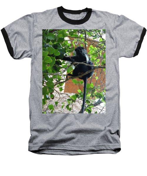 Colobus Monkey Eating Leaves In A Tree - Full Body Baseball T-Shirt