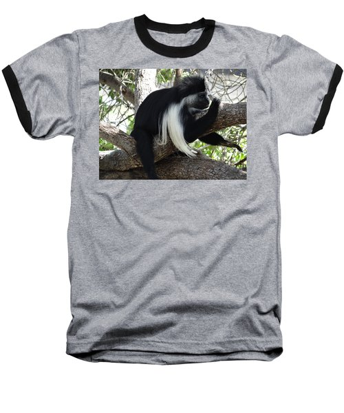 Colobus Monkey Resting In A Tree Baseball T-Shirt