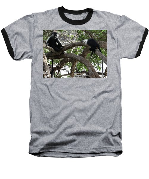Colobus Monkeys Sitting In A Tree Baseball T-Shirt