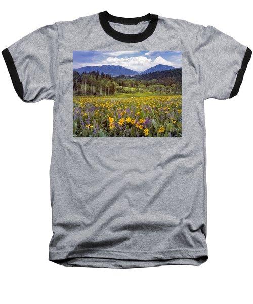 Color Of Spring Baseball T-Shirt by Leland D Howard