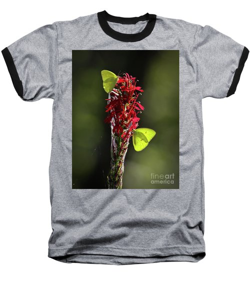 Baseball T-Shirt featuring the photograph Color On Citico by Douglas Stucky