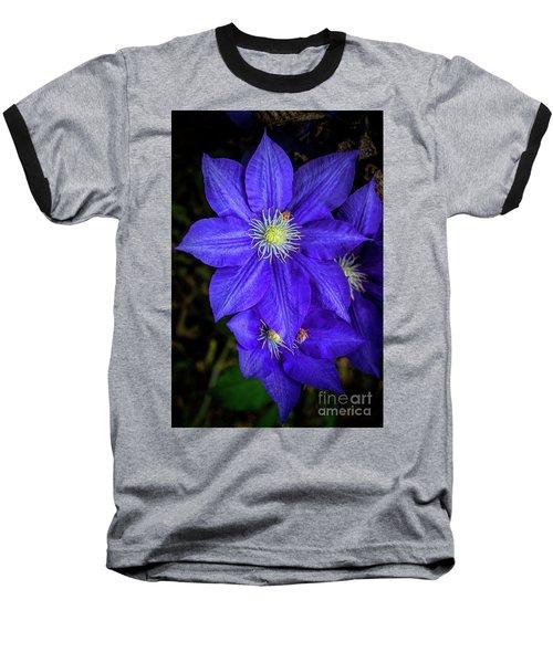 Color Me Purple Baseball T-Shirt