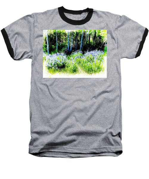 Colorado Apens And Flowers Baseball T-Shirt by Joseph Hendrix
