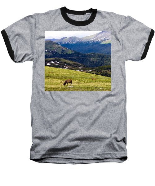 Colorado Elk Baseball T-Shirt