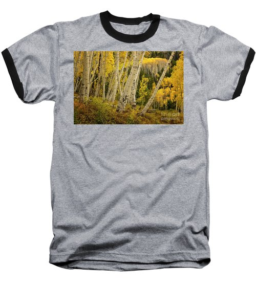 Colorado Fall Aspen Grove Baseball T-Shirt