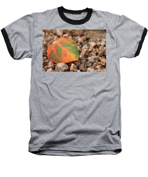 Colorado Fall Colors Baseball T-Shirt by Christin Brodie
