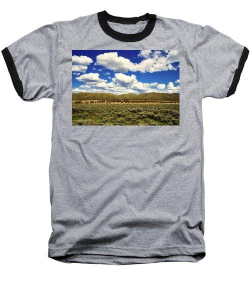 Colorado Vista Baseball T-Shirt by L O C