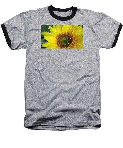 Colorado Wildflower Sunshine  Baseball T-Shirt