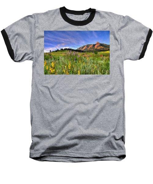 Colorado Wildflowers Baseball T-Shirt by Scott Mahon