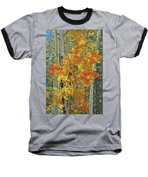 Colorful Aspen Along Million Dollar Highway Baseball T-Shirt