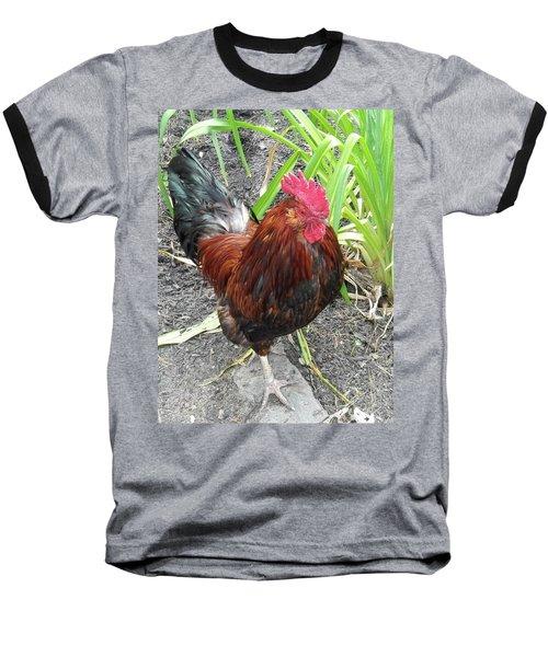 Colorful Cock Baseball T-Shirt