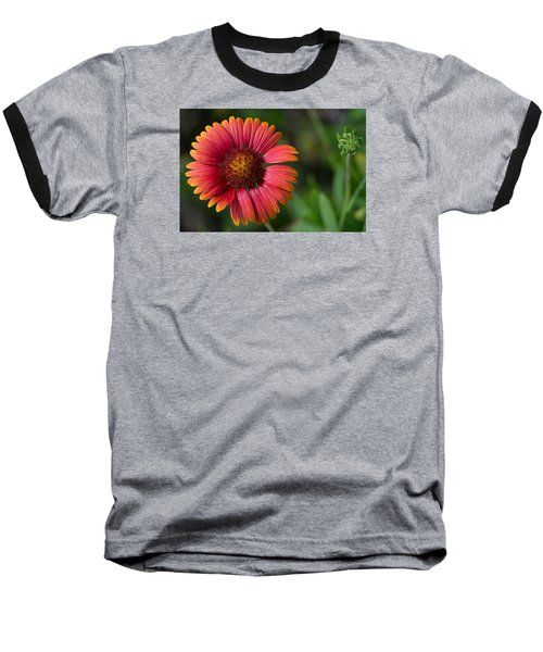 Colorful Indian Blanket Baseball T-Shirt by Kenneth Albin