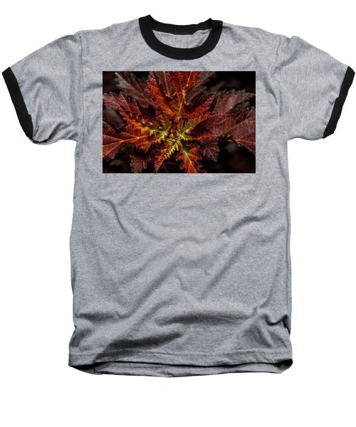 Baseball T-Shirt featuring the photograph Colorful Leaves by Paul Freidlund