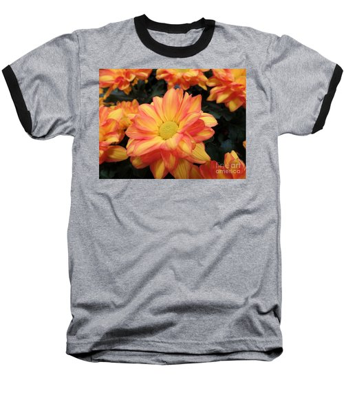 Baseball T-Shirt featuring the photograph Colorful Mums by Ray Shrewsberry