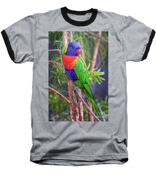 Colorful Parakeet Baseball T-Shirt by Stephanie Hayes