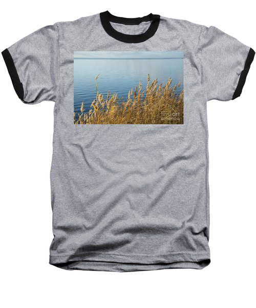 Colorful Reeds Baseball T-Shirt