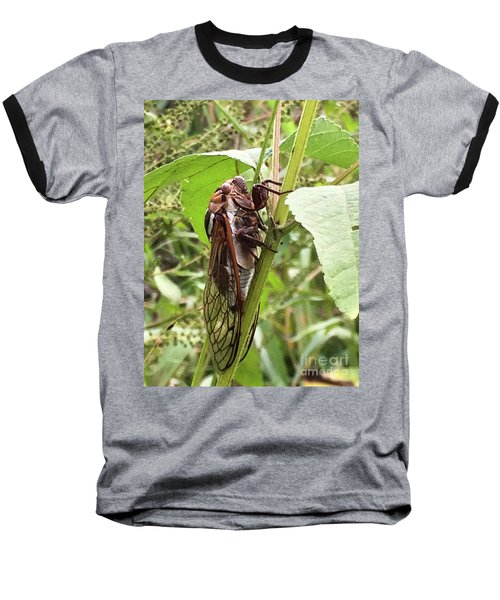 Colorful Summer Cicada Baseball T-Shirt
