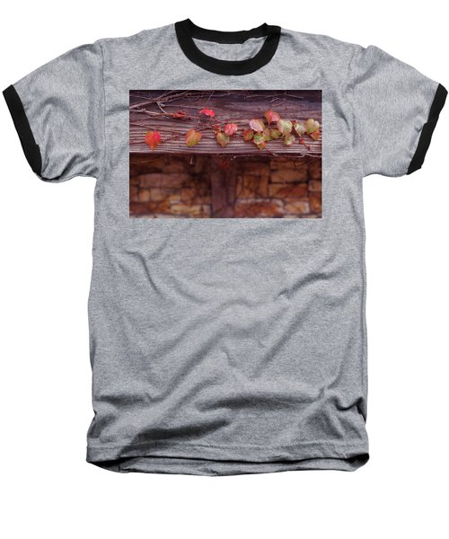 Baseball T-Shirt featuring the photograph Colorful Tree Leaves Changing Color For Auyumn,fall Season In Oc by Jingjits Photography