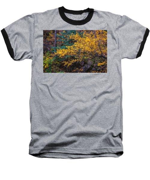 Colorful Trees Along The Creek Bank Baseball T-Shirt by John Brink