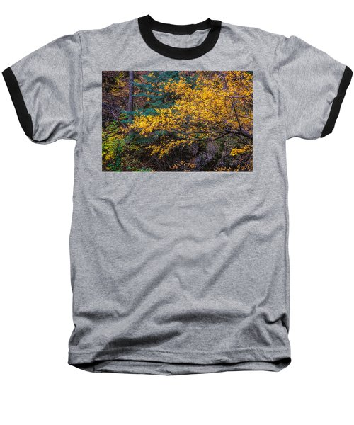 Colorful Trees Along The Creek Bank Baseball T-Shirt