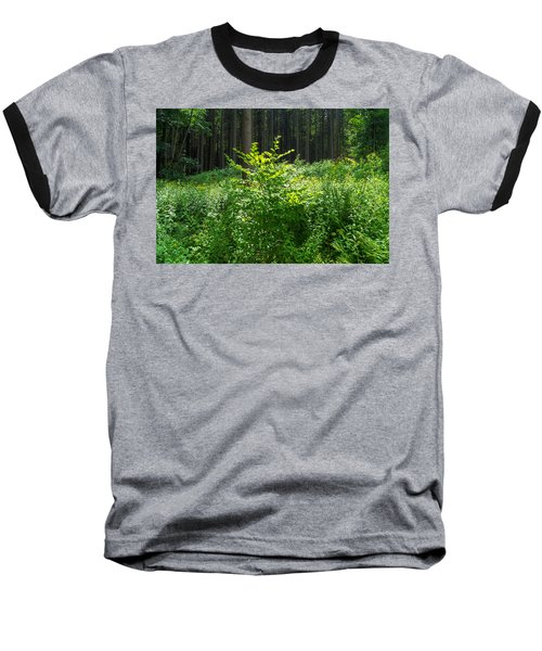 Colors Of A Forest In Vogelsberg Baseball T-Shirt