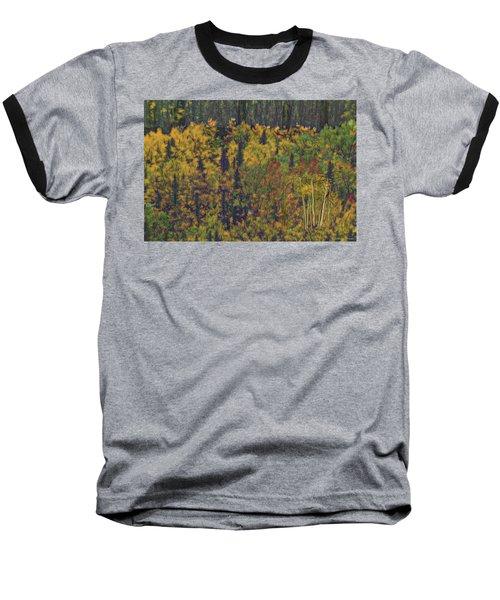 Colors Of Denali Baseball T-Shirt