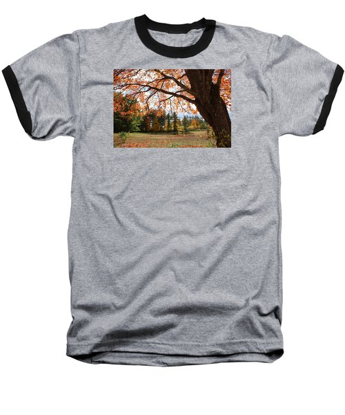 Colors Of Fall Baseball T-Shirt by Lois Lepisto