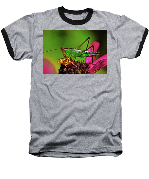 Baseball T-Shirt featuring the photograph Colors Of Nature - Grasshopper On A Zinnia 001 by George Bostian