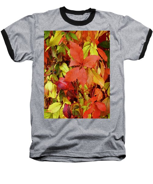Colours Of Autumn Baseball T-Shirt by Brian Chase