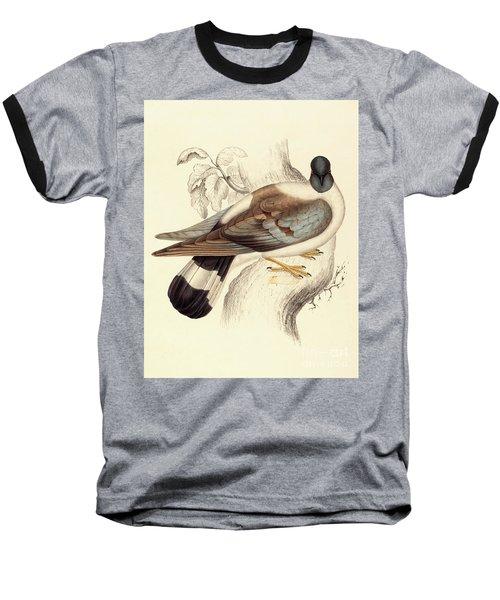 Columba Leuconota, Snow Pigeon Baseball T-Shirt