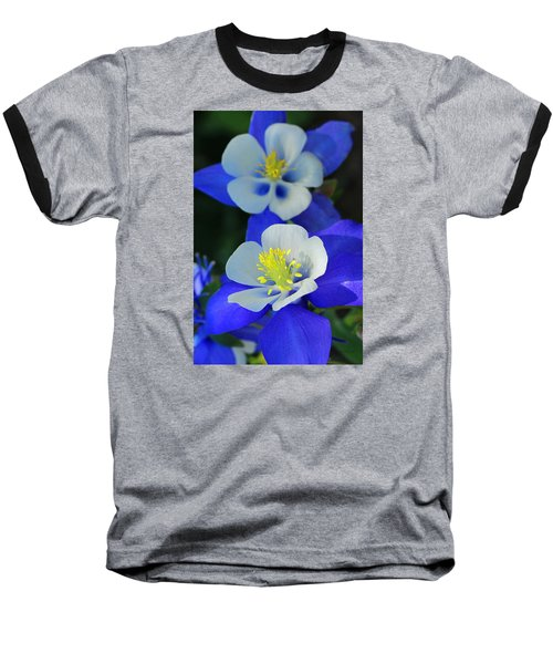 Columbine Day Baseball T-Shirt