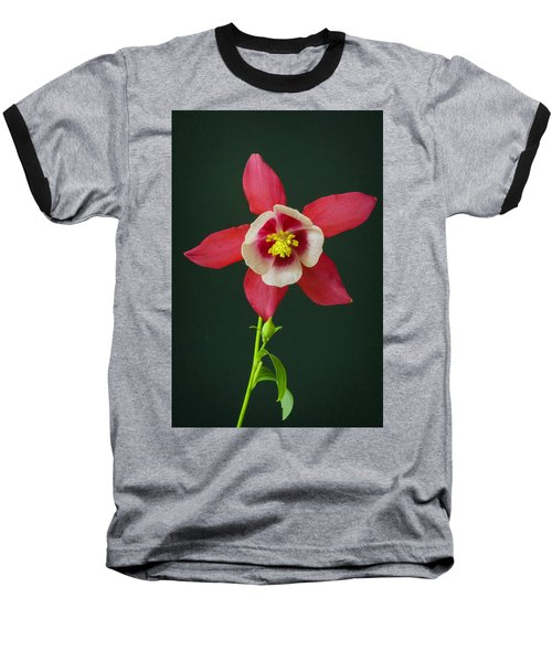 Columbine Flower 2 Baseball T-Shirt