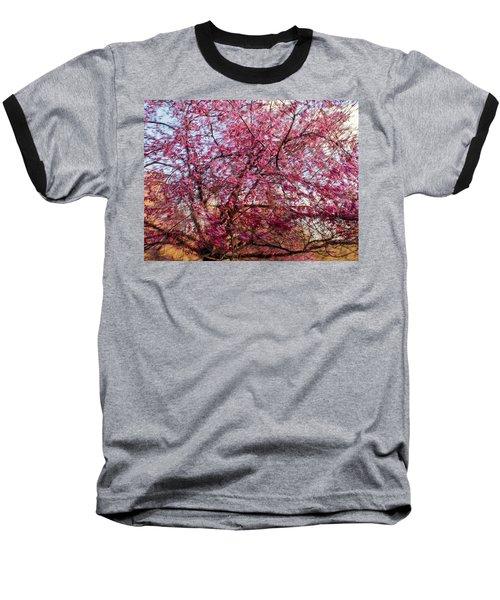 Columnar Sargent Cherry 1 Baseball T-Shirt by Bernhart Hochleitner