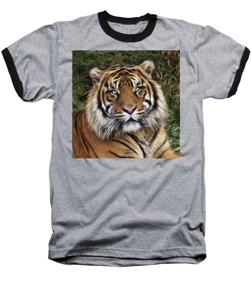 Come Pet Me Baseball T-Shirt
