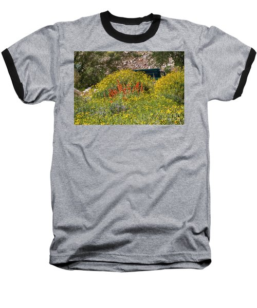 Come Sit Awhile Baseball T-Shirt by Anne Rodkin