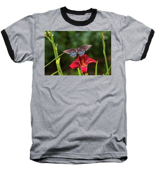 Coming In For A Landing Baseball T-Shirt