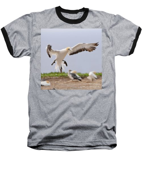 Coming In To Land Baseball T-Shirt