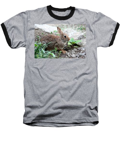Baseball T-Shirt featuring the photograph Coming Out Of Hiding by Sheila Brown