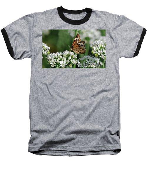 Common Buckeye Butterfly Baseball T-Shirt by Diane Giurco
