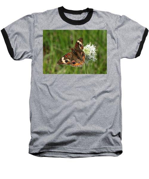 Common Buckeye Butterfly On Wildflower Baseball T-Shirt