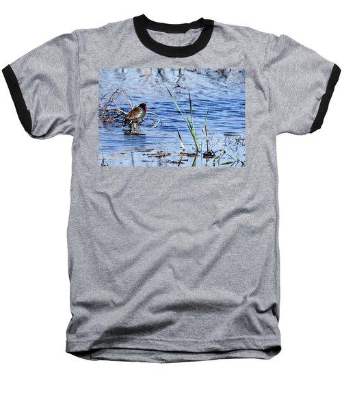 Common Gallinule Baseball T-Shirt by Gary Wightman